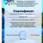 Сертификат Елкина Р.Р. МБОУ ДО ДДТ Дружный г Уфа РБ